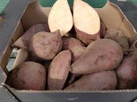 Sladké brambory batáty v prodeji